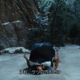 【映画糞レビュー】ほぼ300